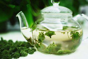 Uống trà hoa tam thất rất tốt cho cơ thể