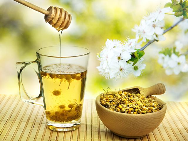 [Top 7] loại trà thanh nhiệt đập tan những cơn nóng nực ngày hè